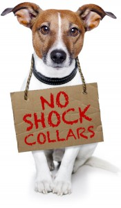 no-shock-collars-175x300