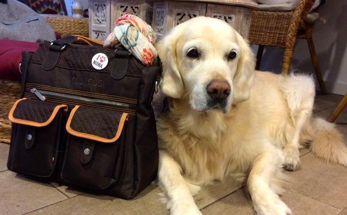 Vacaciones sin coche y con una perra de 32 kg – Primeraparte